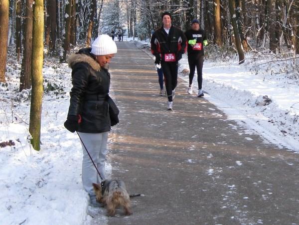4 2009 Brutus tijdens een witte LPM Marathon waar hij ondanks de sneeuw toch een stok vond om mee te spelen